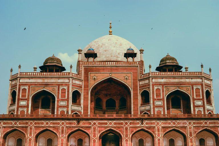intern abroad in new delhi